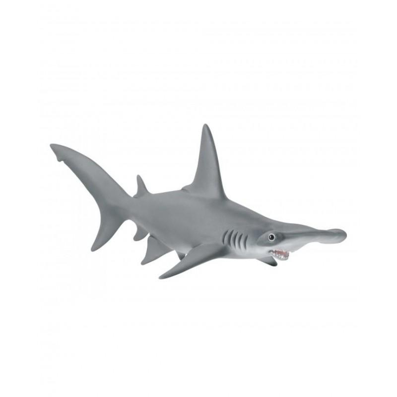 Requin-Marteau - Wild Life
