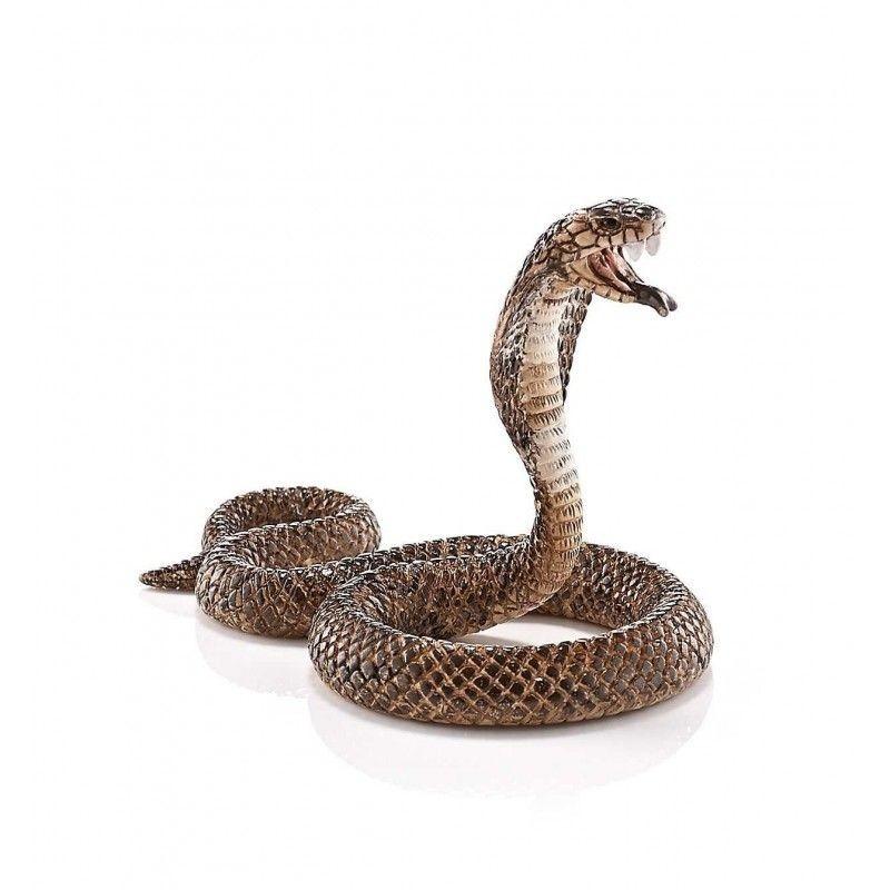 Cobra - Wild Live