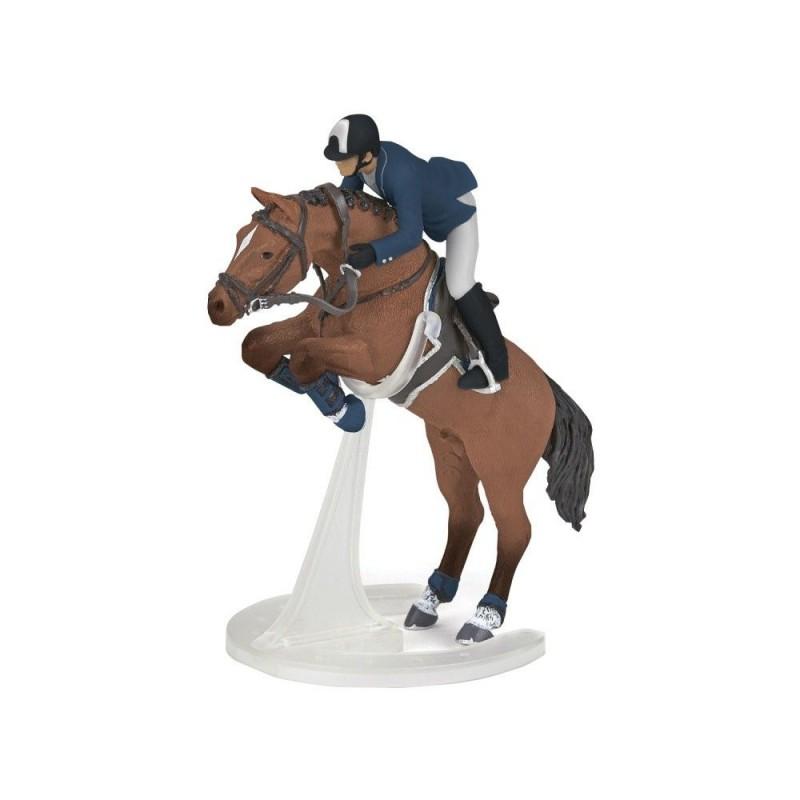 Cheval de saut d'obstacles et son cavalier - Chevaux, poulains et poneys