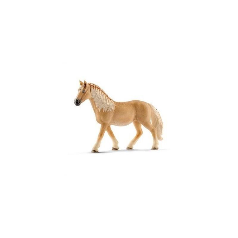 Jument haflinger - Horse Club