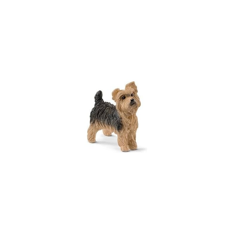 Yorkshire terrier - Farm World