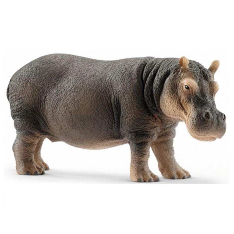 Hippopotame - Wild Life