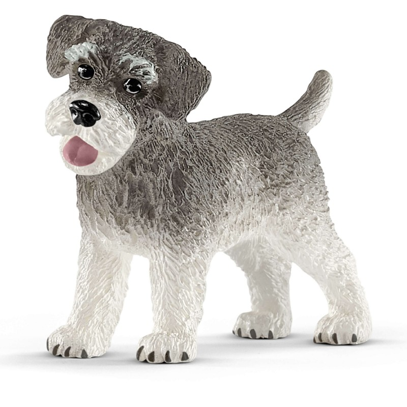 Schnauzer nain - Farm World