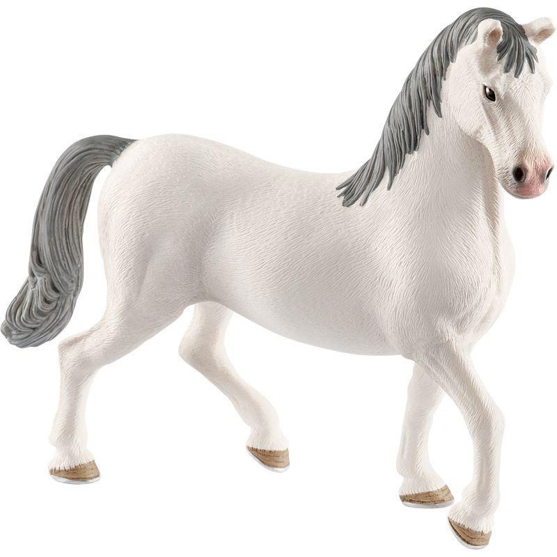 Etalon Lippizan - Horse club